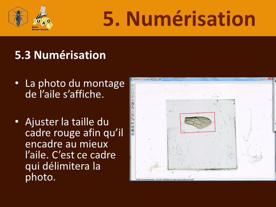 5.3 Numérisation La photo du montage de laile saffiche. Ajuster la taille du cadre rouge afin quil encadre au mieux laile. Cest ce cadre qui délimiter