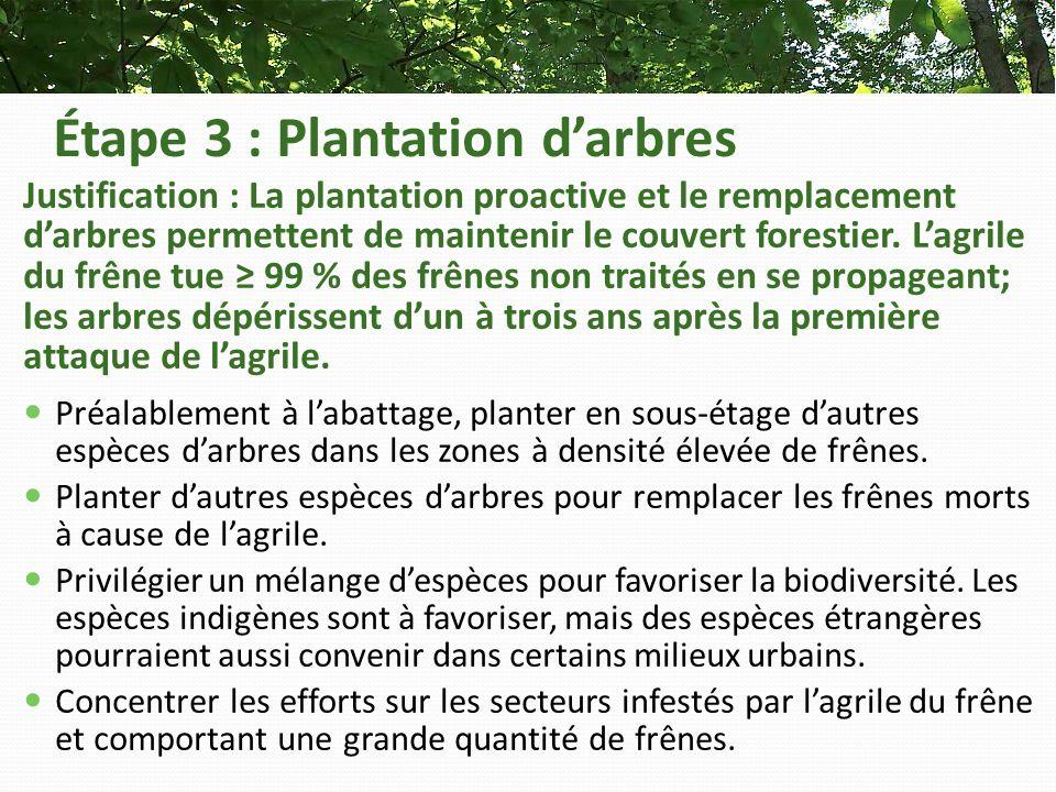Étape 3 : Plantation darbres Justification : La plantation proactive et le remplacement darbres permettent de maintenir le couvert forestier.