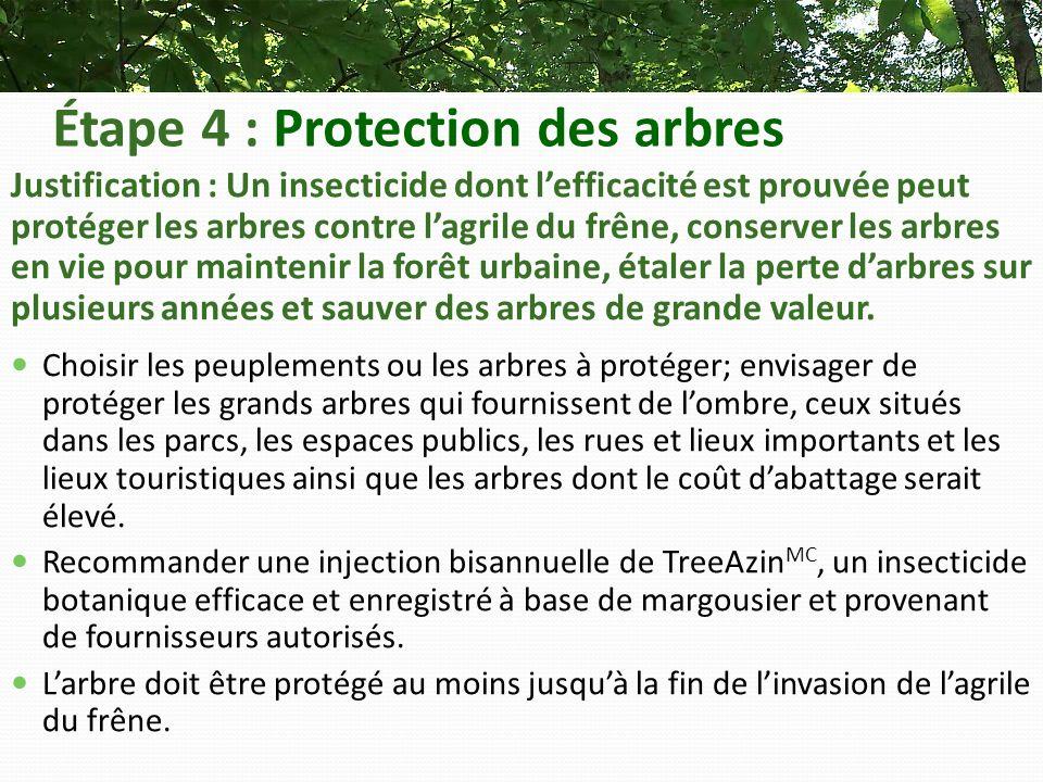 Étape 4 : Protection des arbres Justification : Un insecticide dont lefficacité est prouvée peut protéger les arbres contre lagrile du frêne, conserver les arbres en vie pour maintenir la forêt urbaine, étaler la perte darbres sur plusieurs années et sauver des arbres de grande valeur.