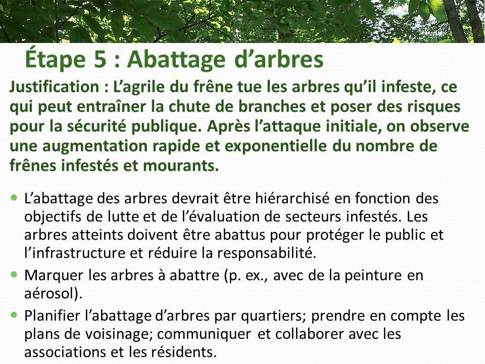 Étape 5 : Abattage darbres Justification : Lagrile du frêne tue les arbres quil infeste, ce qui peut entraîner la chute de branches et poser des risques pour la sécurité publique.
