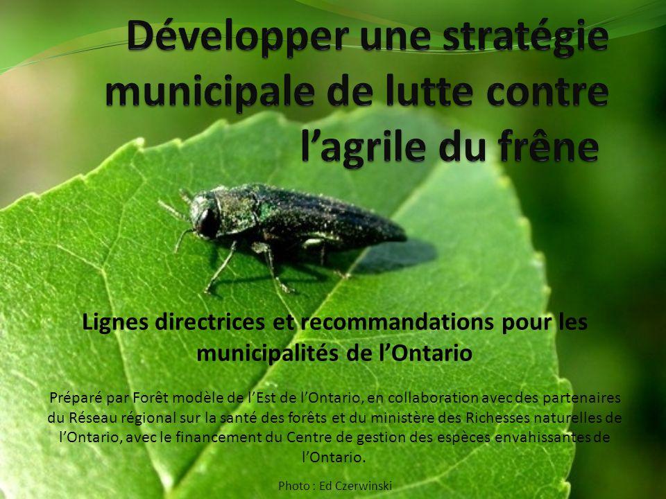 Lignes directrices et recommandations pour les municipalités de lOntario Préparé par Forêt modèle de lEst de lOntario, en collaboration avec des partenaires du Réseau régional sur la santé des forêts et du ministère des Richesses naturelles de lOntario, avec le financement du Centre de gestion des espèces envahissantes de lOntario.