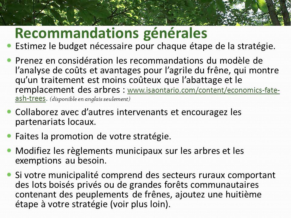 Recommandations générales Estimez le budget nécessaire pour chaque étape de la stratégie.
