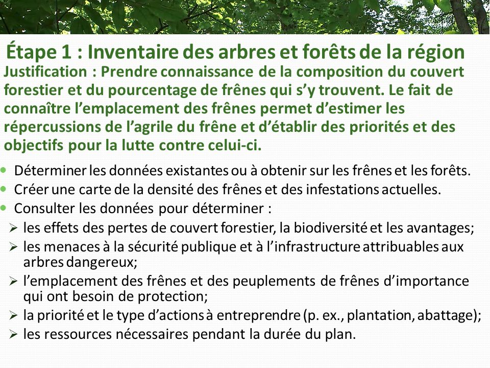 Étape 1 : Inventaire des arbres et forêts de la région Justification : Prendre connaissance de la composition du couvert forestier et du pourcentage de frênes qui sy trouvent.