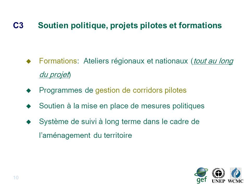 C3Soutien politique, projets pilotes et formations 10 Formations: Ateliers régionaux et nationaux (tout au long du projet) Programmes de gestion de corridors pilotes Soutien à la mise en place de mesures politiques Système de suivi à long terme dans le cadre de laménagement du territoire