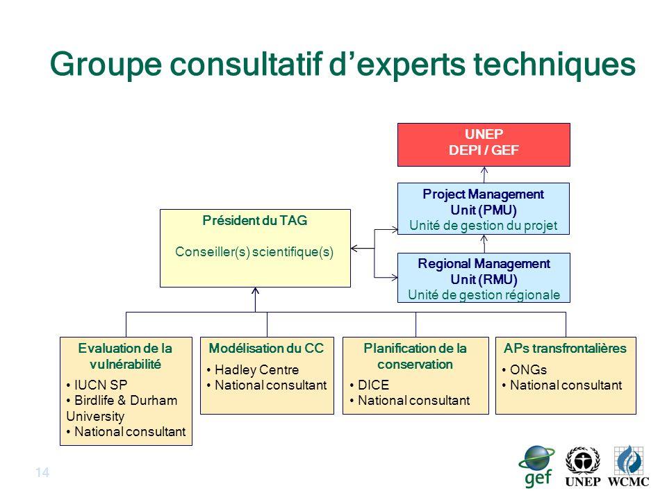 Groupe consultatif dexperts techniques 14 Project Management Unit (PMU) Unité de gestion du projet UNEP DEPI / GEF Président du TAG Conseiller(s) scie