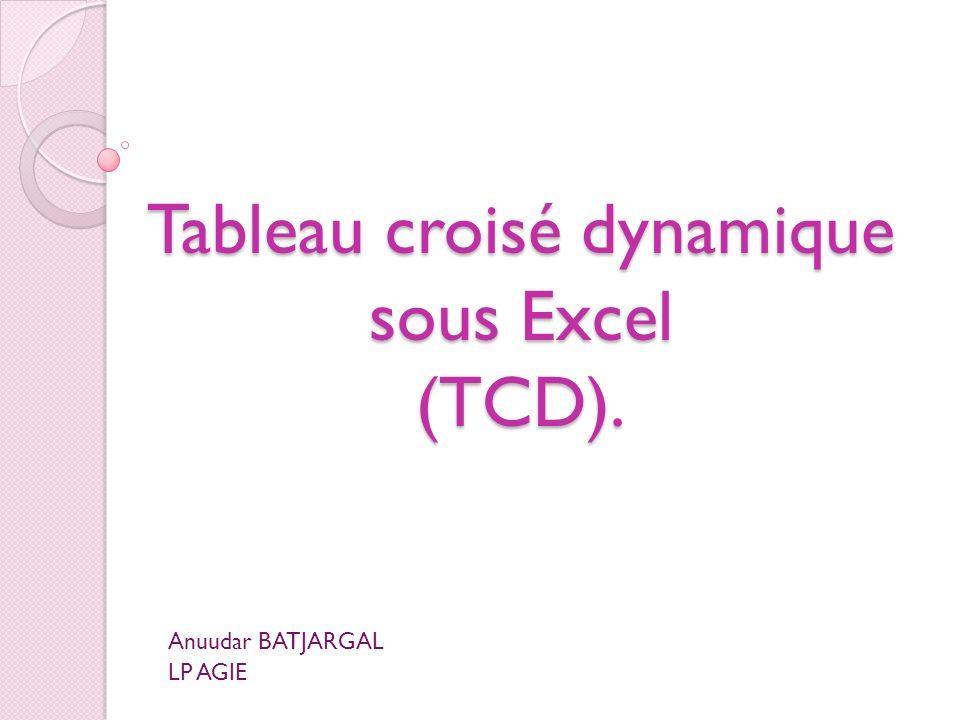 Tableau croisé dynamique sous Excel (TCD). Anuudar BATJARGAL LP AGIE