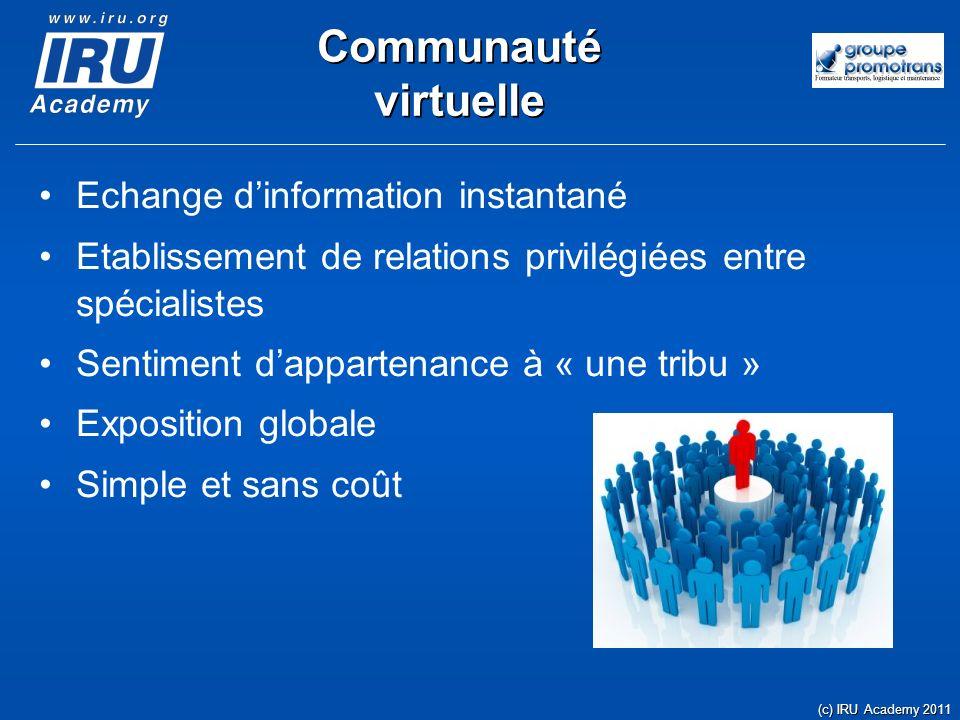 Communauté virtuelle Echange dinformation instantané Etablissement de relations privilégiées entre spécialistes Sentiment dappartenance à « une tribu