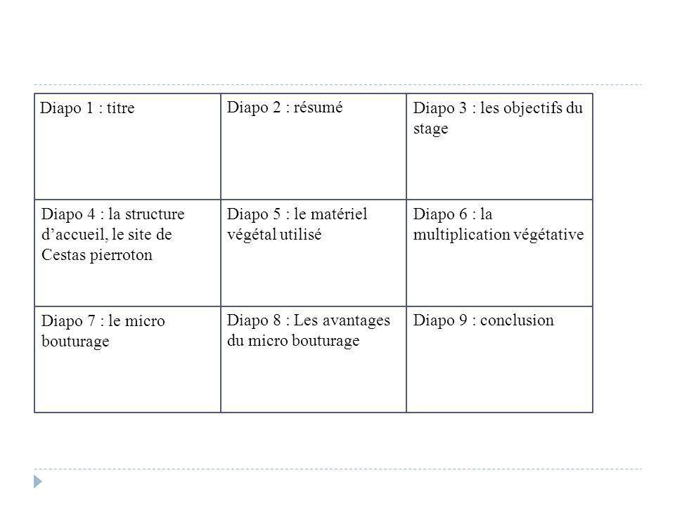 Diapo 1 : titre Diapo 2 : résumé Diapo 3 : les objectifs du stage Diapo 4 : la structure daccueil, le site de Cestas pierroton Diapo 5 : le matériel v