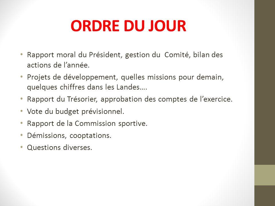 ORDRE DU JOUR Rapport moral du Président, gestion du Comité, bilan des actions de lannée. Projets de développement, quelles missions pour demain, quel