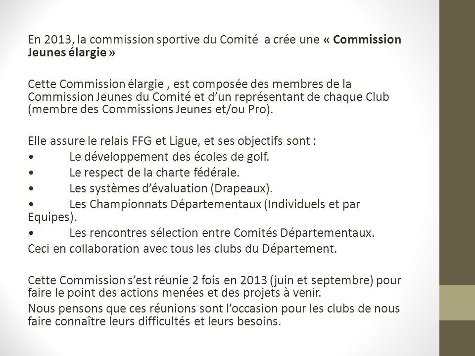 En 2013, la commission sportive du Comité a crée une « Commission Jeunes élargie » Cette Commission élargie, est composée des membres de la Commission Jeunes du Comité et dun représentant de chaque Club (membre des Commissions Jeunes et/ou Pro).