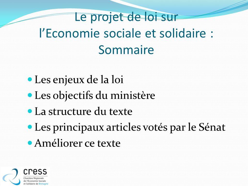 Le projet de loi sur lEconomie sociale et solidaire : Sommaire Les enjeux de la loi Les objectifs du ministère La structure du texte Les principaux ar