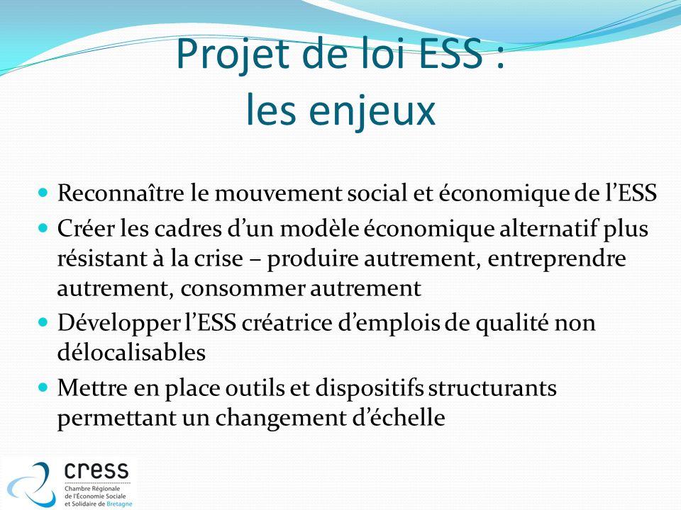 Projet de loi ESS : les enjeux Reconnaître le mouvement social et économique de lESS Créer les cadres dun modèle économique alternatif plus résistant