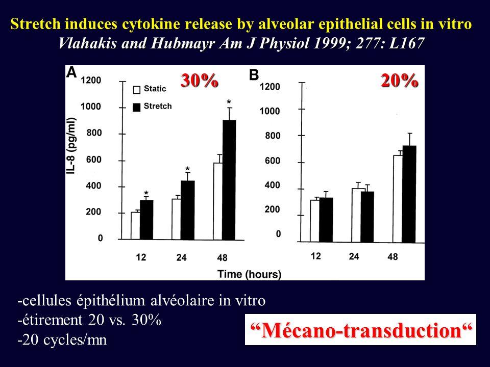 Vlahakis and Hubmayr Am J Physiol 1999; 277: L167 Stretch induces cytokine release by alveolar epithelial cells in vitro Vlahakis and Hubmayr Am J Physiol 1999; 277: L167 -cellules épithélium alvéolaire in vitro -étirement 20 vs.