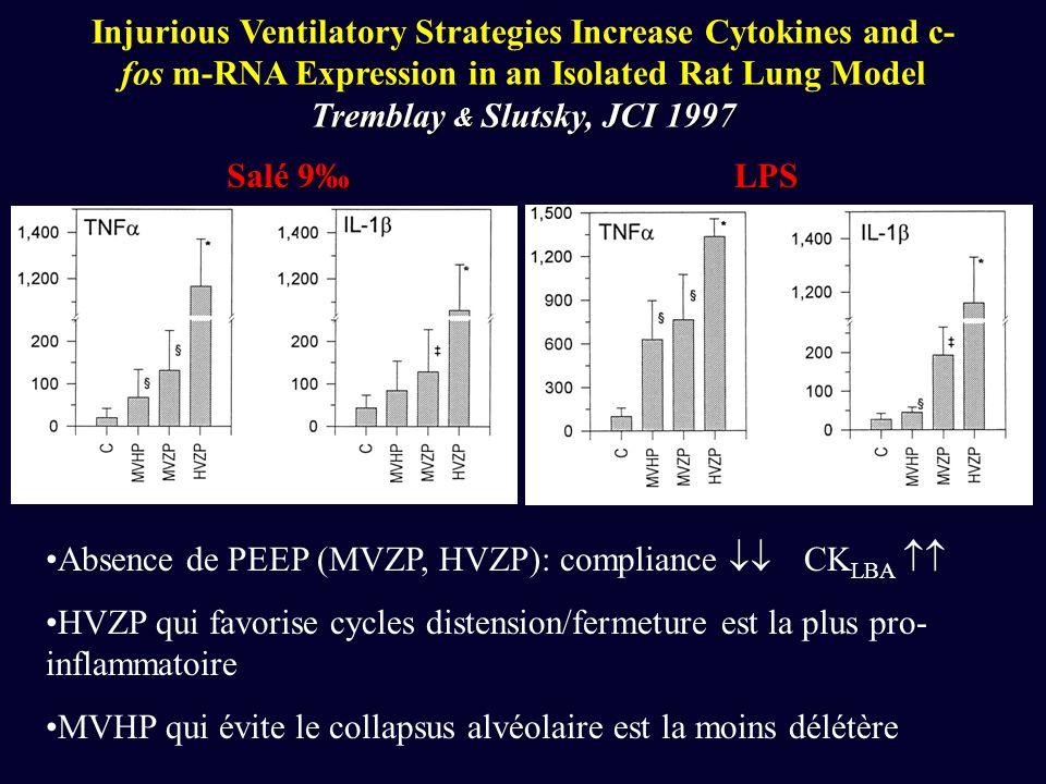 Tremblay & Slutsky, JCI 1997 Injurious Ventilatory Strategies Increase Cytokines and c- fos m-RNA Expression in an Isolated Rat Lung Model Tremblay & Slutsky, JCI 1997 Salé 9 LPS Absence de PEEP (MVZP, HVZP): compliance CK LBA HVZP qui favorise cycles distension/fermeture est la plus pro- inflammatoire MVHP qui évite le collapsus alvéolaire est la moins délétère