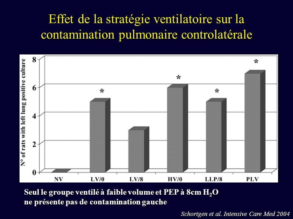 Effet de la stratégie ventilatoire sur la contamination pulmonaire controlatérale Schortgen et al.