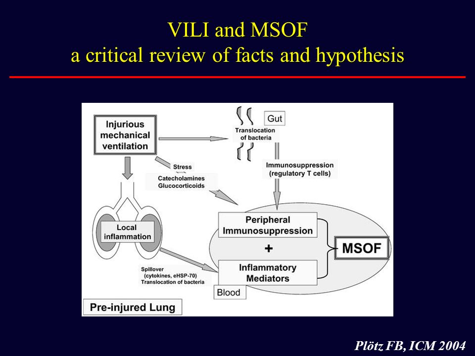 VILI and MSOF a critical review of facts and hypothesis Plötz FB, ICM 2004
