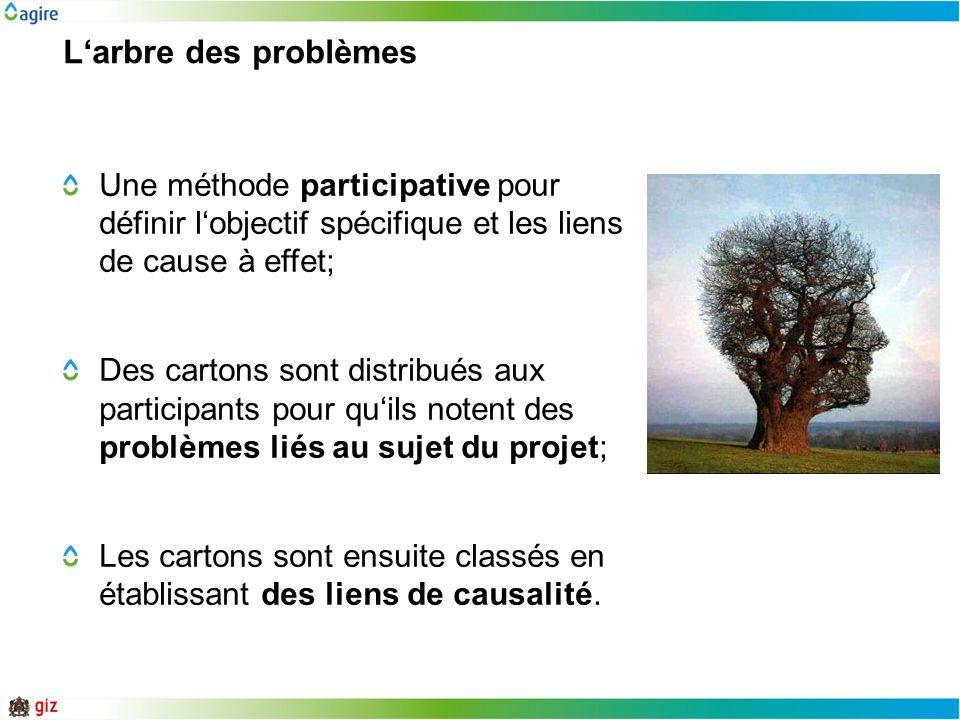 Larbre des problèmes Une méthode participative pour définir lobjectif spécifique et les liens de cause à effet; Des cartons sont distribués aux partic