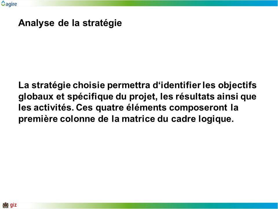 Analyse de la stratégie La stratégie choisie permettra didentifier les objectifs globaux et spécifique du projet, les résultats ainsi que les activité