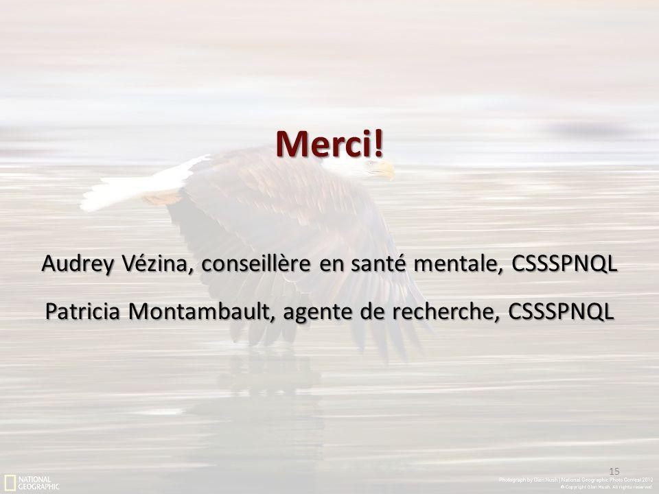 Merci! Audrey Vézina, conseillère en santé mentale, CSSSPNQL Patricia Montambault, agente de recherche, CSSSPNQL 15