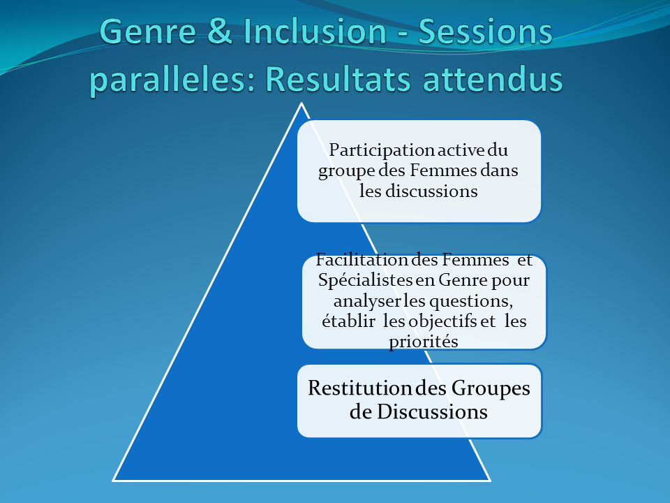 Participation active du groupe des Femmes dans les discussions Facilitation des Femmes et Spécialistes en Genre pour analyser les questions, établir les objectifs et les priorités Restitution des Groupes de Discussions