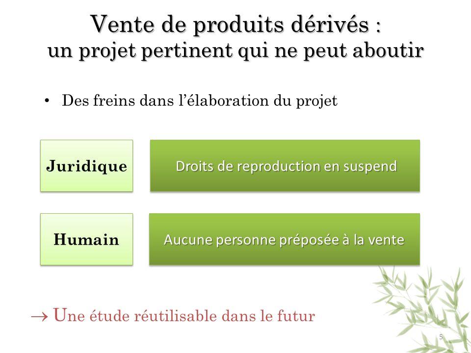 Des freins dans lélaboration du projet Humain Juridique Droits de reproduction en suspend Droits de reproduction en suspend Aucune personne préposée à