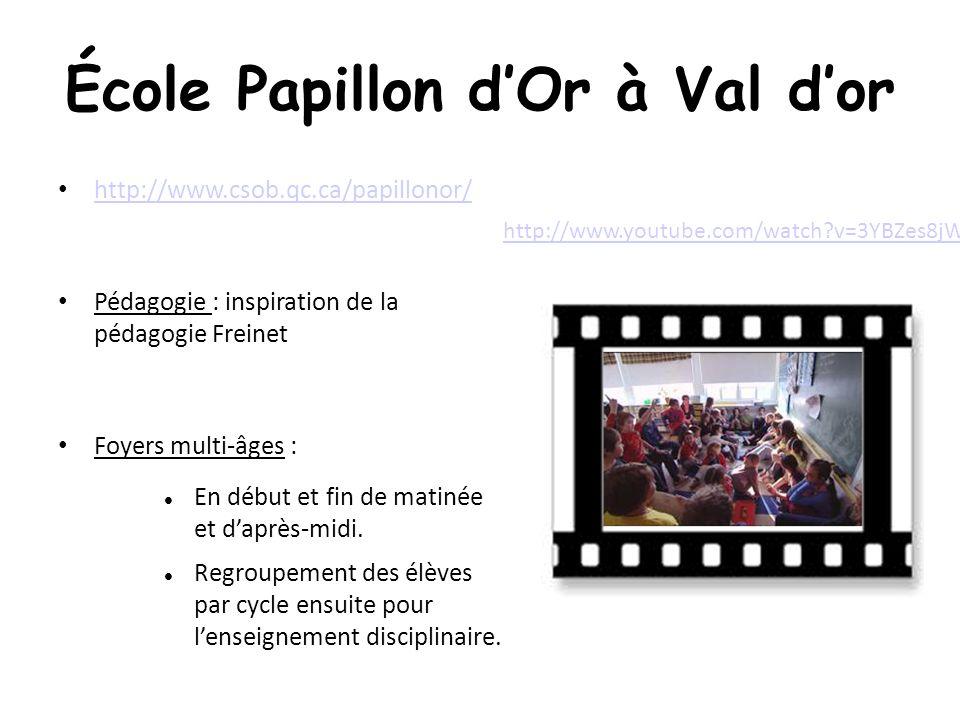 École Papillon dOr à Val dor http://www.csob.qc.ca/papillonor/ Pédagogie : inspiration de la pédagogie Freinet Foyers multi-âges : En début et fin de matinée et daprès-midi.