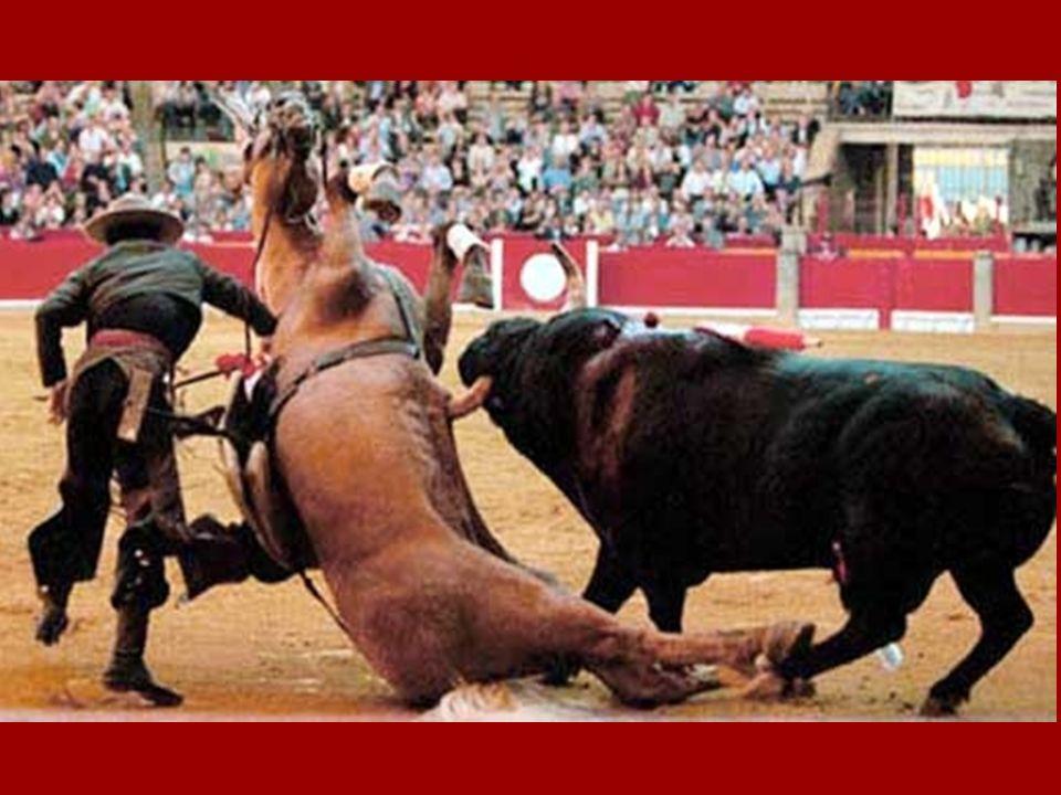 La corrida spectacle pour barbares ou comment torturer et faire souffrir un animal en toute légalité