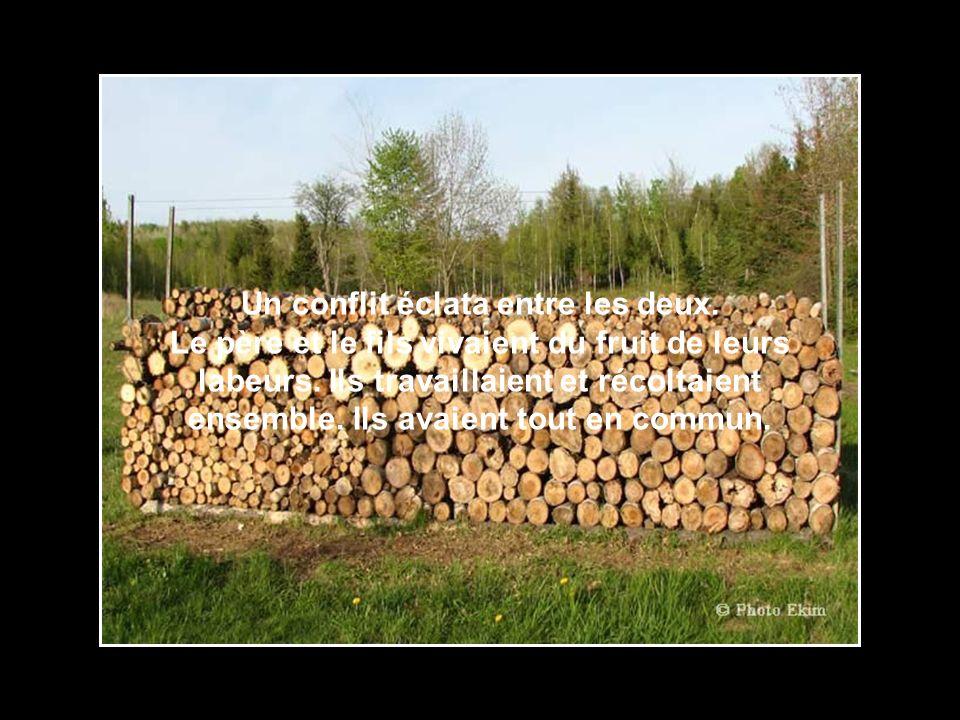 Voici lhistoire dun père et son fils qui saimaient beaucoup et qui vivaient en parfaite harmonie sur leur terre à bois, jusquau jour où…