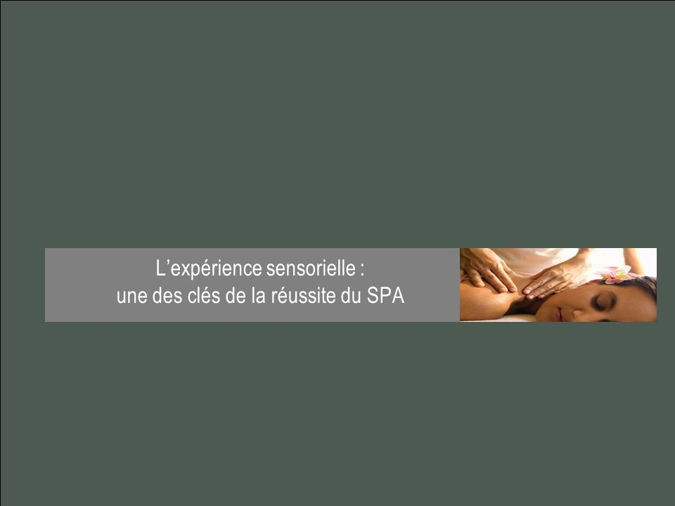 Lexpérience sensorielle : une des clés de la réussite du SPA