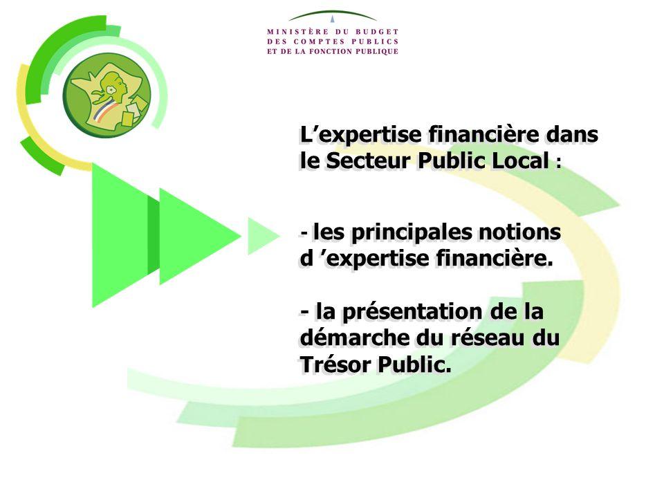 1 Lexpertise financière dans le Secteur Public Local : - les principales notions d expertise financière. - la présentation de la démarche du réseau du