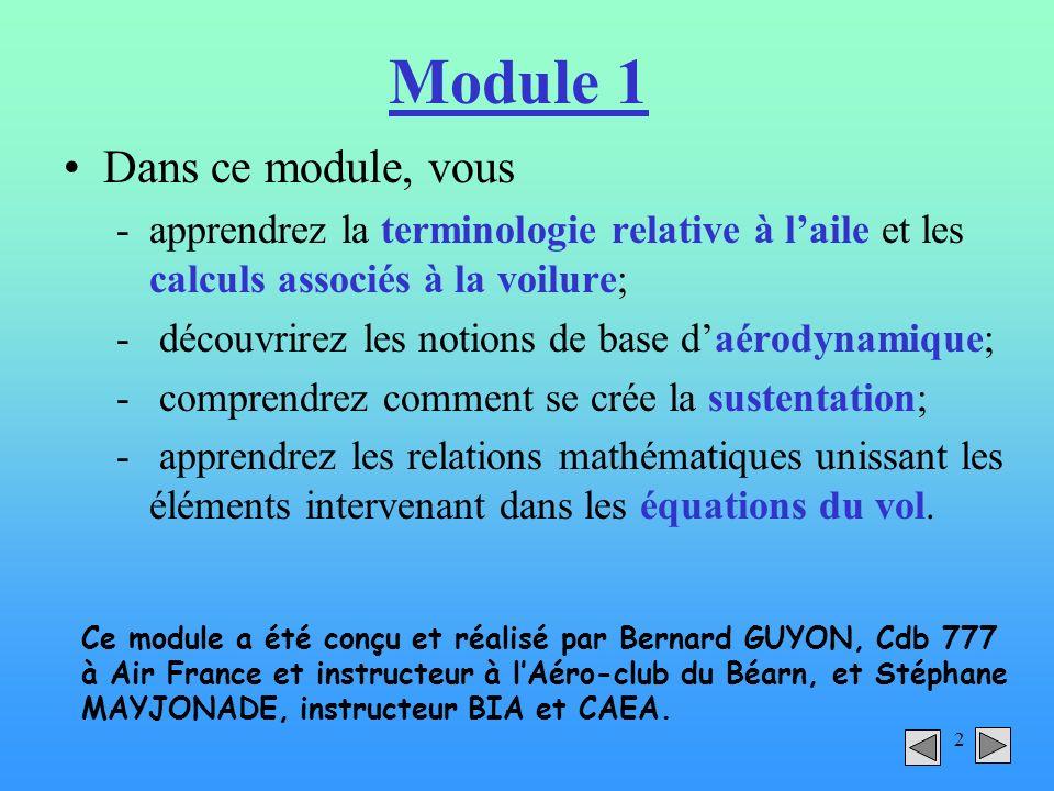 2 Module 1 Dans ce module, vous -apprendrez la terminologie relative à laile et les calculs associés à la voilure; - découvrirez les notions de base d