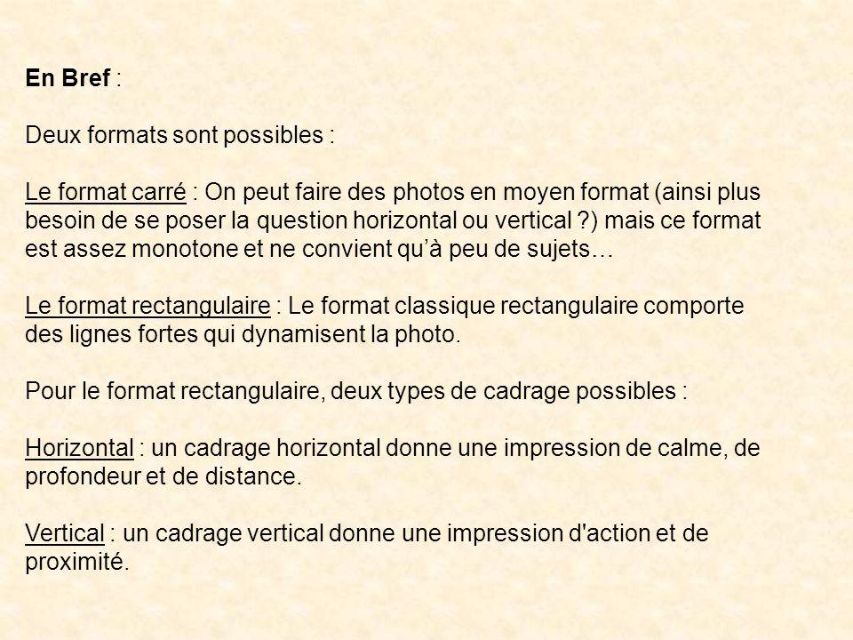 En Bref : Deux formats sont possibles : Le format carré : On peut faire des photos en moyen format (ainsi plus besoin de se poser la question horizont