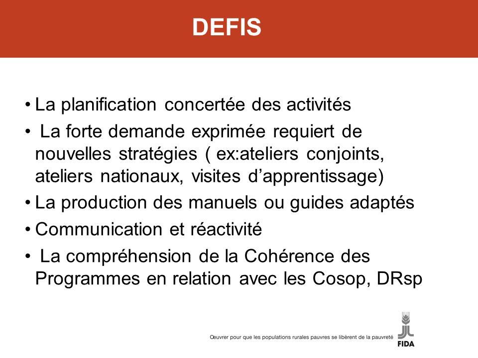 DEFIS La planification concertée des activités La forte demande exprimée requiert de nouvelles stratégies ( ex:ateliers conjoints, ateliers nationaux,