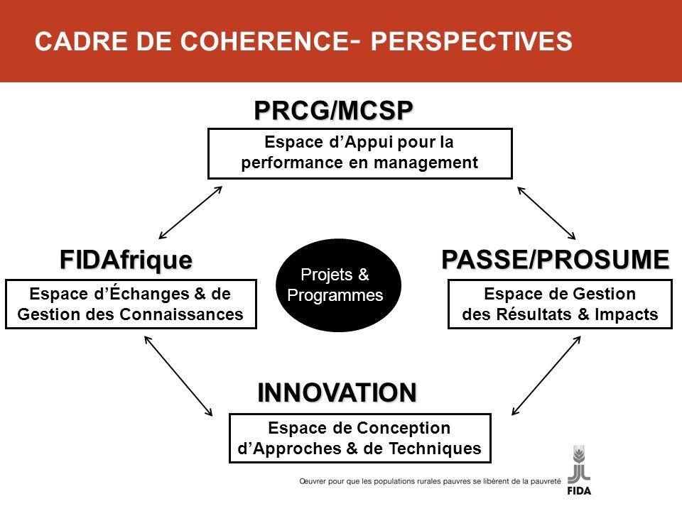 CADRE DE COHERENCE - PERSPECTIVES INNOVATION PASSE/PROSUME PRCG/MCSP FIDAfrique Espace dAppui pour la performance en management Espace de Gestion des