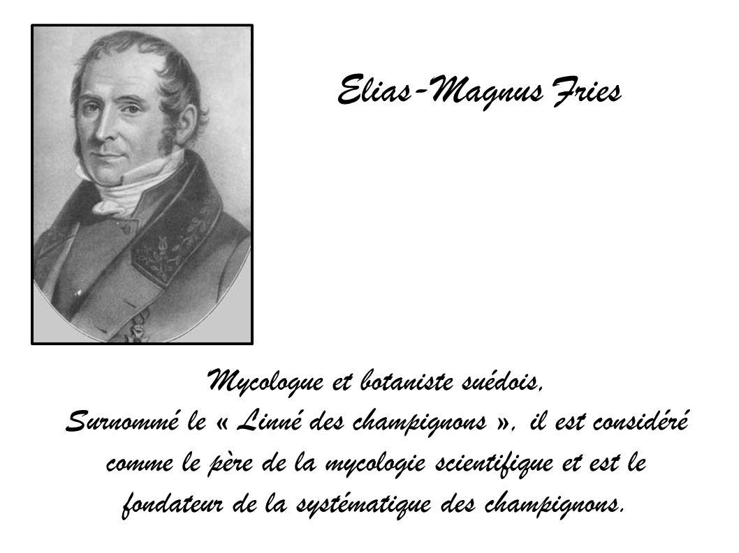 Elias-Magnus Fries Mycologue et botaniste suédois, Surnommé le « Linné des champignons », il est considéré comme le père de la mycologie scientifique