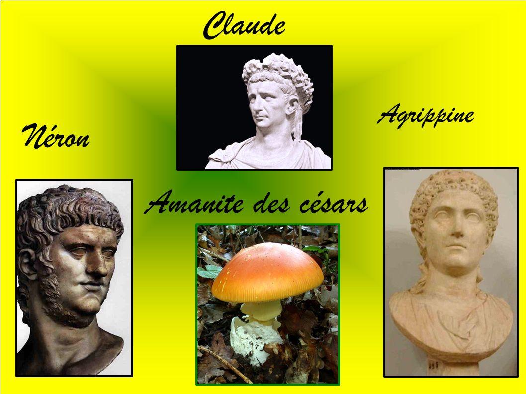 Claude Néron Agrippine Amanite des césars