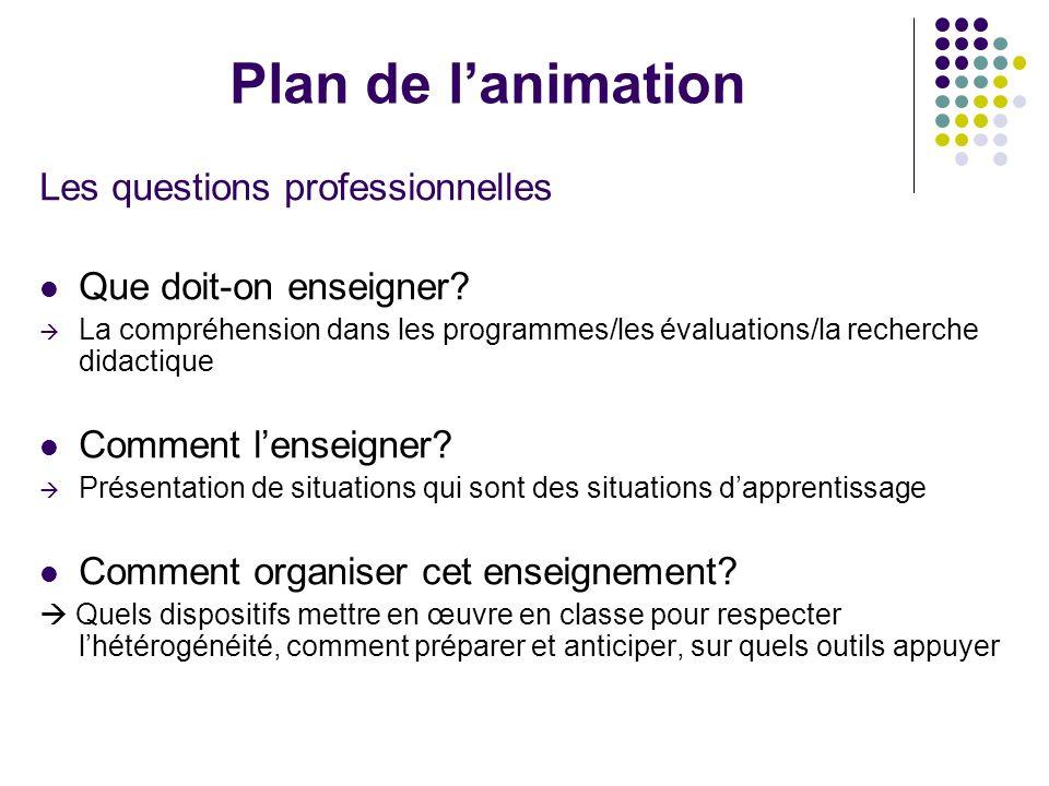 Plan de lanimation Les questions professionnelles Que doit-on enseigner? La compréhension dans les programmes/les évaluations/la recherche didactique
