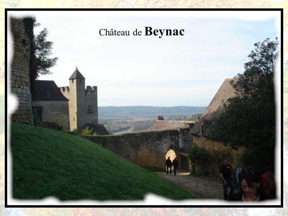 Le château de Beynac est situé sur la commune de Beynac-et-Cazenac, dans le département de la Dordogne et plus précisément dans le Périgord noir. Ce c