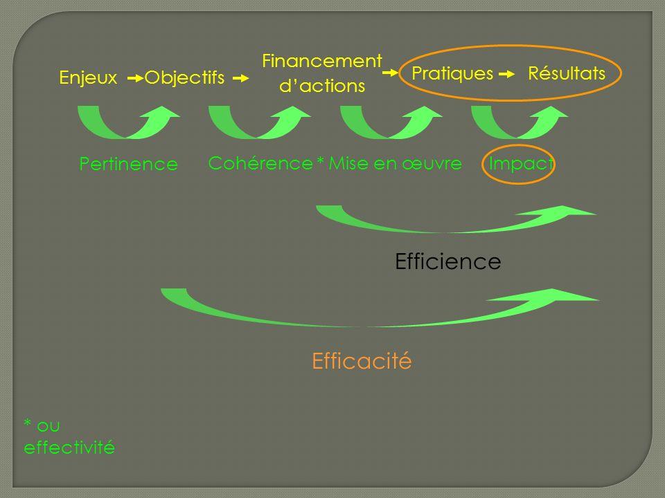 PratiqueRésultats Pertinence ImpactCohérence *Mise en œuvre Efficience Efficacité EnjeuxObjectifs Financement dactions PratiquesRésultats * ou effectivité