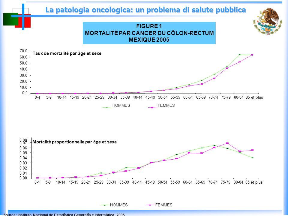 La patologia oncologica: un problema di salute pubblica FIGURE 1 MORTALITÉ PAR CANCER DU CÔLON-RECTUM MEXIQUE 2005 HOMMESFEMMES 0.0 10.0 20.0 30.0 40.0 50.0 60.0 70.0 0-45-910-1415-1920-2425-2930-3435-3940-4445-4950-5455-5960-6465-6970-7475-7980-8485 et plus HOMMESFEMMES Taux de mortalité par âge et sexe 0.00 0.01 0.02 0.03 0.04 0.05 0.06 0.07 0.08 0-45-910-1415-1920-2425-2930-34 35-39 40-4445-4950-5455-5960-6465-6970-7475-7980-8485 et plus Mortalité proportionnelle par âge et sexe Source: Instituto Nacional de Estadística Geografía e Informática.
