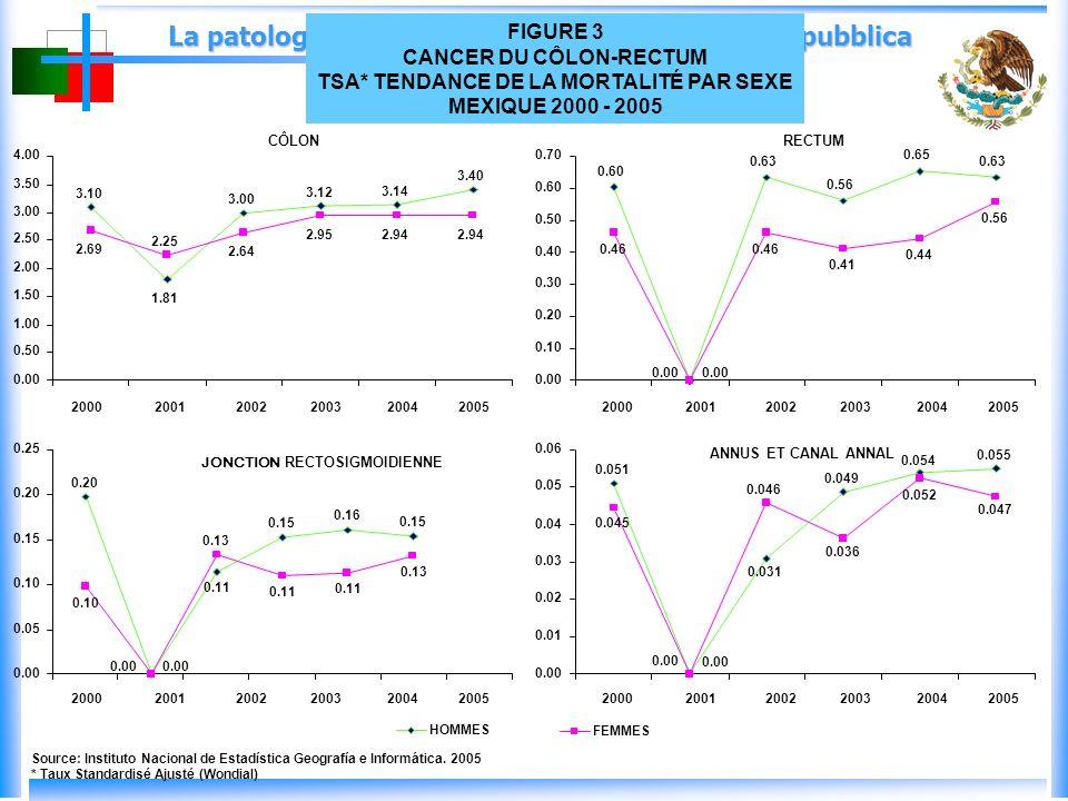 La patologia oncologica: un problema di salute pubblica 3.10 1.81 3.00 3.12 3.14 3.40 2.69 2.25 2.64 2.952.94 0.00 0.50 1.00 1.50 2.00 2.50 3.00 3.50 4.00 200020012002200320042005 CÔLON 0.60 0.00 0.63 0.56 0.65 0.63 0.46 0.00 0.46 0.41 0.44 0.56 0.00 0.10 0.20 0.30 0.40 0.50 0.60 0.70 200020012002200320042005 RECTUM Source: Instituto Nacional de Estadística Geografía e Informática.