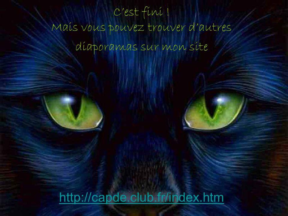 Cest fini ! Mais vous pouvez trouver dautres diaporamas sur mon site http://capde.club.fr/index.htm http://capde.club.fr/index.htm
