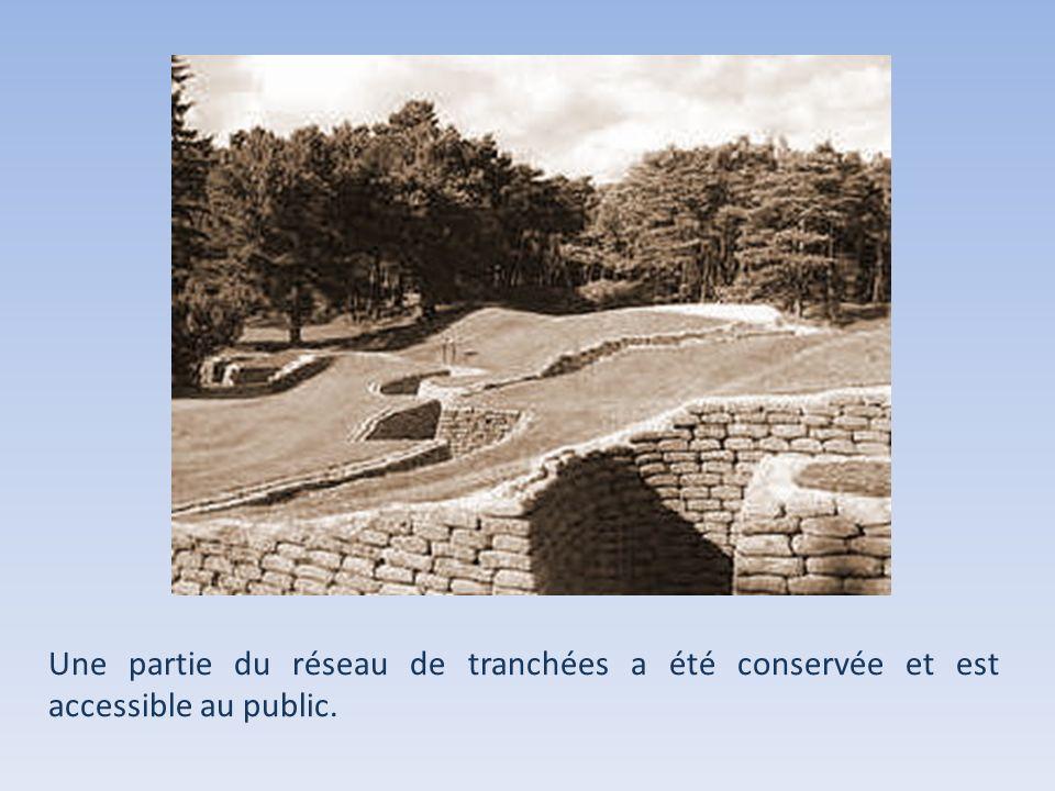 La colline de Vimy est aujourdhui boisée. Chaque arbre a été planté par un Canadien et représente le sacrifice dun soldat.