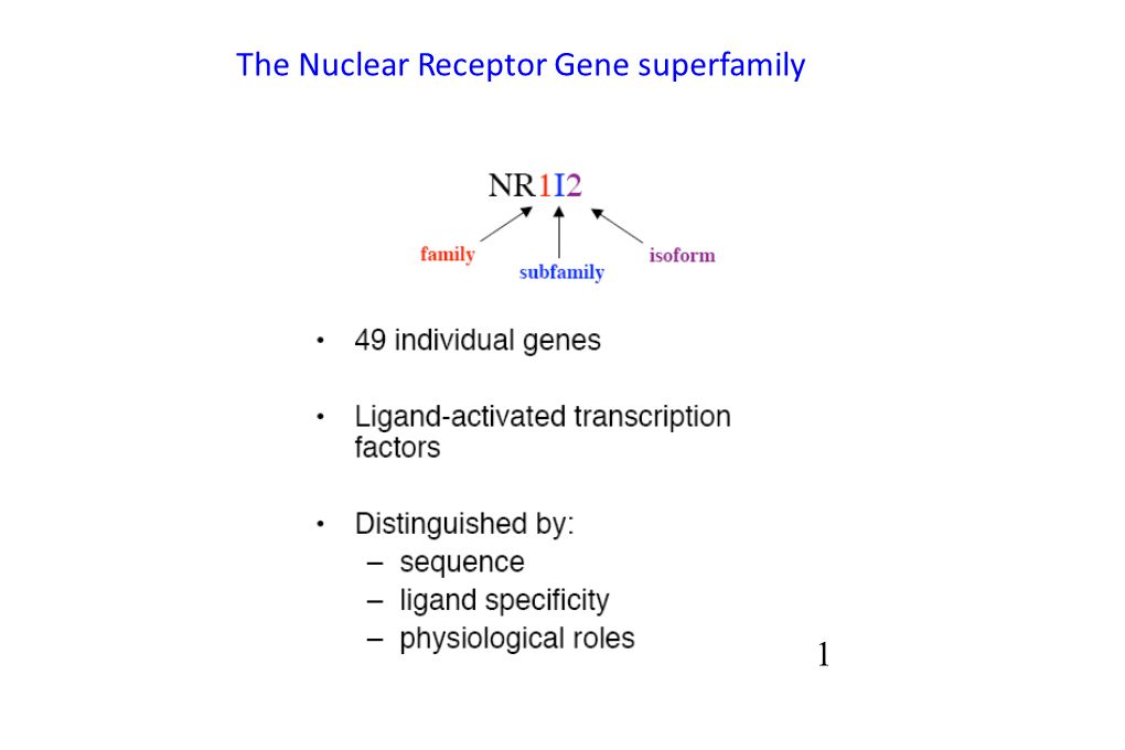 11 The Nuclear Receptor Gene superfamily