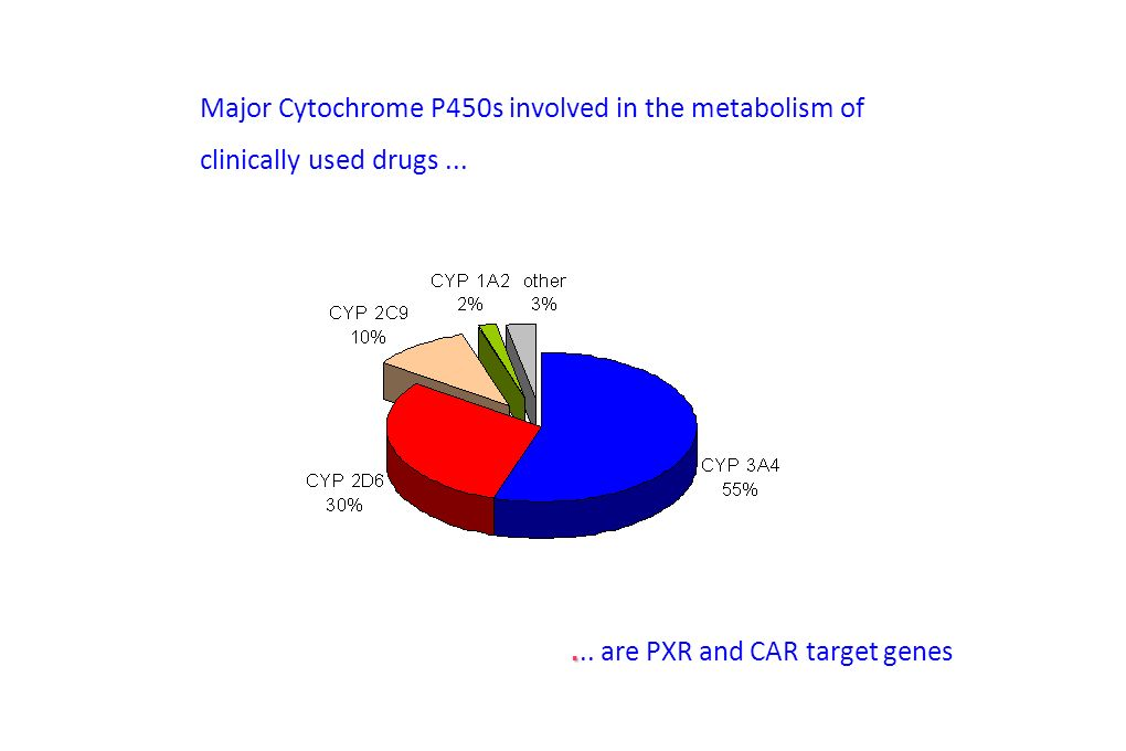 Major Cytochrome P450s involved in the metabolism of clinically used drugs....... are PXR and CAR target genes