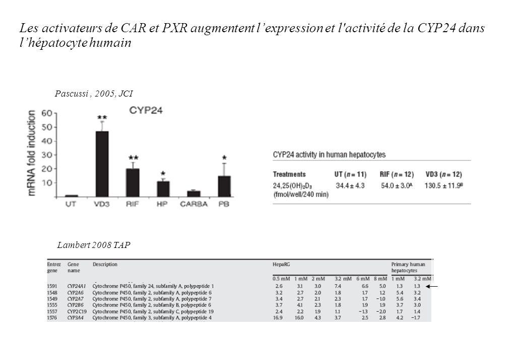 Les activateurs de CAR et PXR augmentent lexpression et l'activité de la CYP24 dans lhépatocyte humain Lambert 2008 TAP Pascussi, 2005, JCI