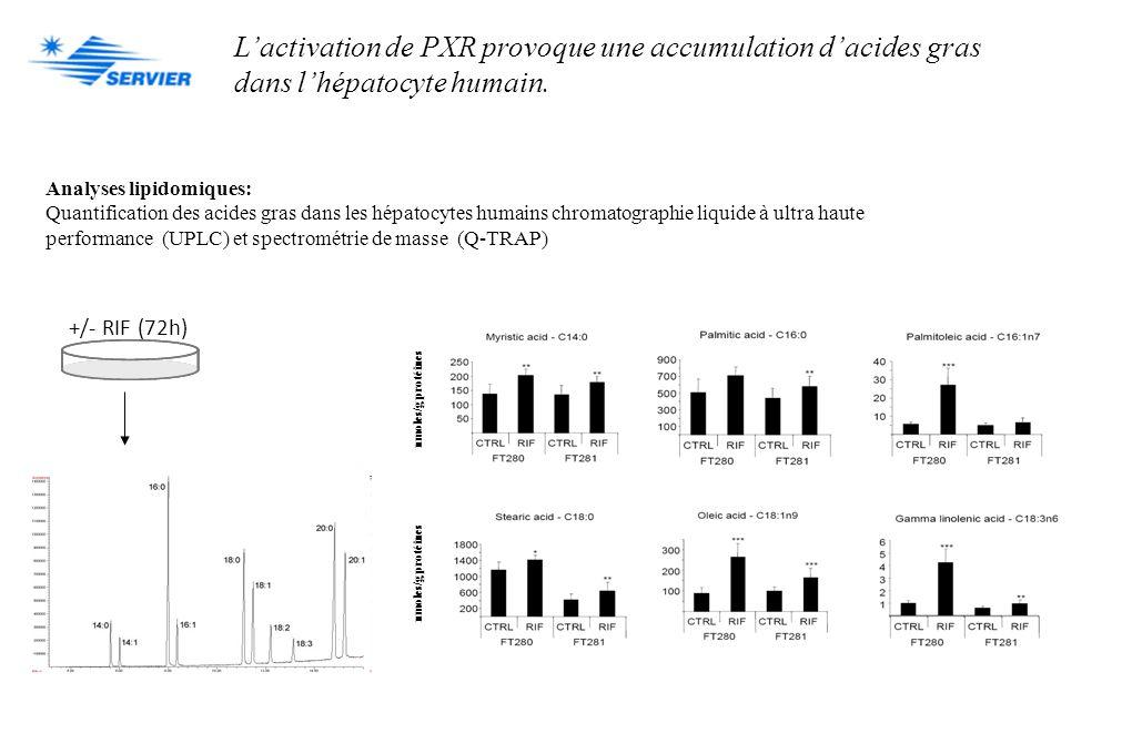 Lactivation de PXR provoque une accumulation dacides gras dans lhépatocyte humain. Analyses lipidomiques: Quantification des acides gras dans les hépa