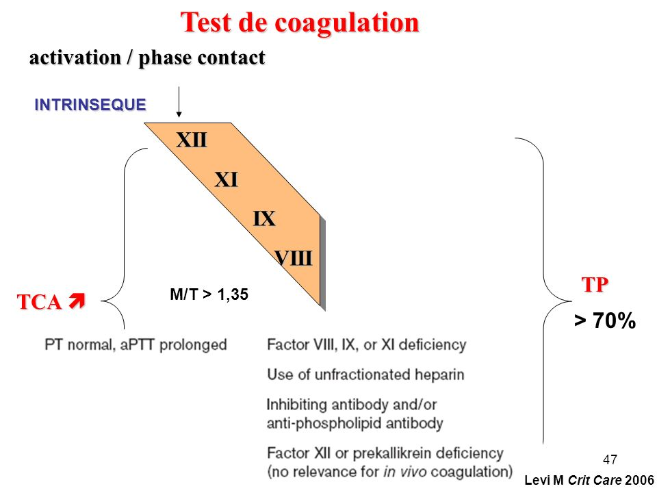 47 TP Test de coagulation activation / phase contact XII XI XI IX IX VIII VIII INTRINSEQUE TCA TCA M/T > 1,35 > 70% Levi M Crit Care 2006