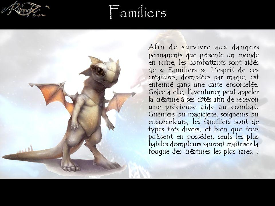 Familiers Afin de survivre aux dangers permanents que présente un monde en ruine, les combattants sont aidés de « Familiers ».