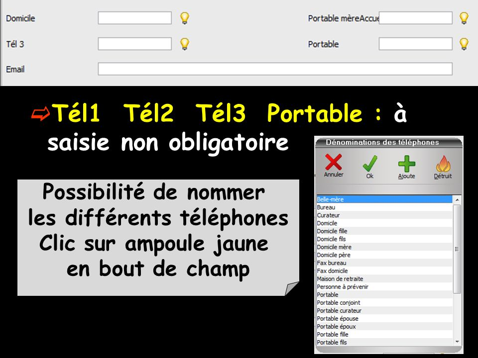Tél1 Tél2 Tél3 Portable : à saisie non obligatoire Possibilité de nommer les différents téléphones Clic sur ampoule jaune en bout de champ